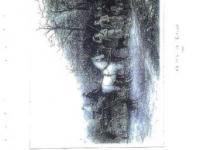 imagen-14